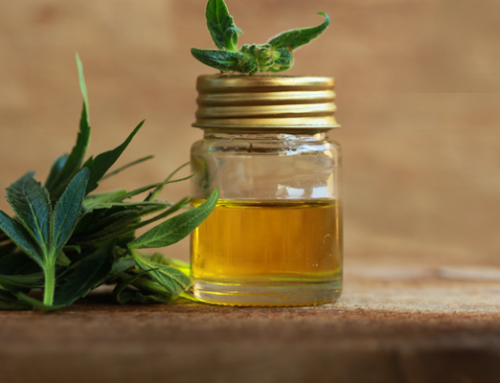 Facts and Myths of CBD – What's the Difference